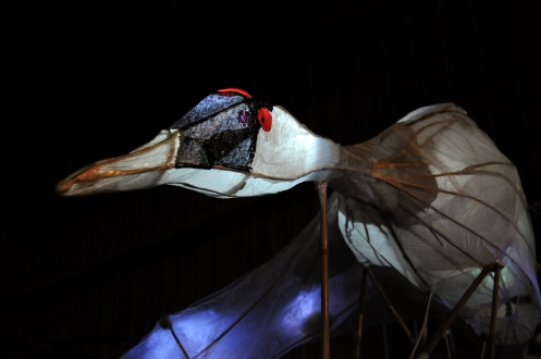Giant Crane Puppet - A Celebration of Cranes