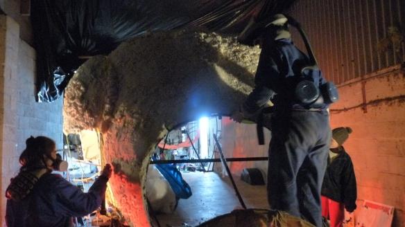 sculpting iggy's arse